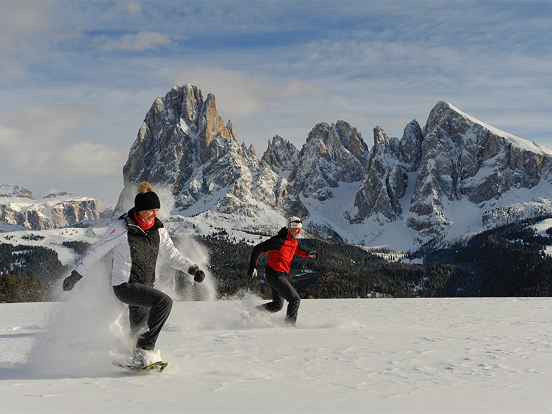 Powder snow week Alpe di Siusi